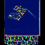PrimeECS